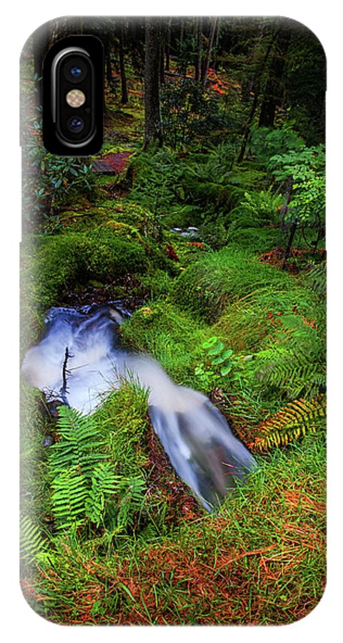 Jenny Rainbow Fine Art Photography IPhone X Case featuring the photograph Forest Water Stream. Benmore Botanic Garden by Jenny Rainbow