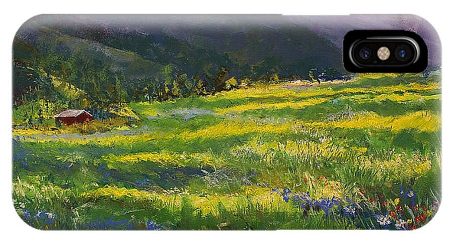 Forgotten Field IPhone X Case featuring the pastel Forgotten Field by David Patterson