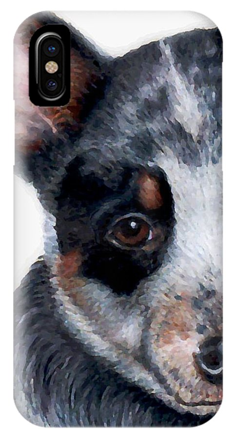 Australian Cattle Dog IPhone X Case featuring the drawing Foster Detail by Kristen Wesch