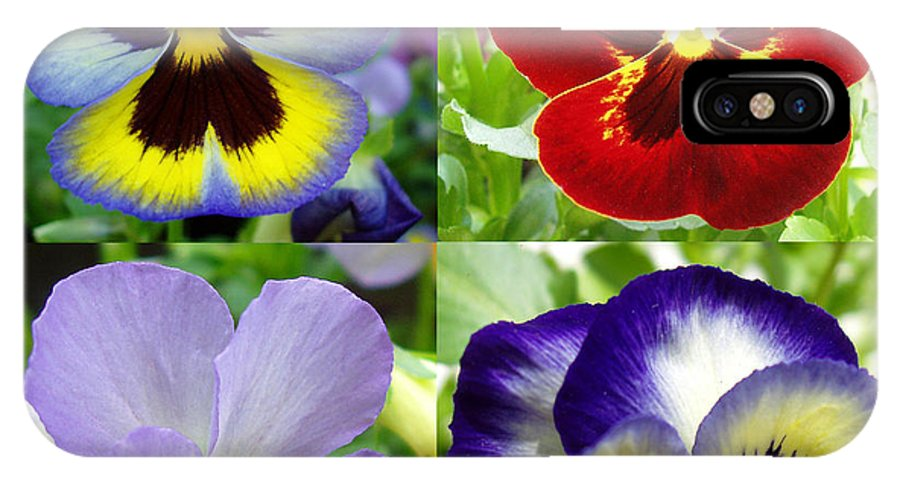 Pansy IPhone X Case featuring the photograph Four Pansies by Nancy Mueller