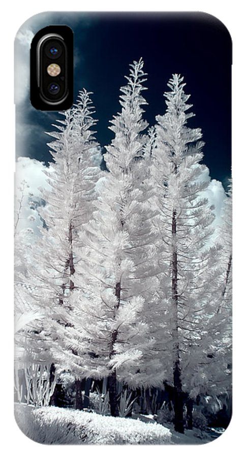 3scape Photos IPhone X Case featuring the photograph Four Tropical Pines Infrared by Adam Romanowicz