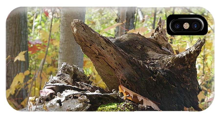 Nature IPhone X Case featuring the photograph Foxy Stump by Peggy King