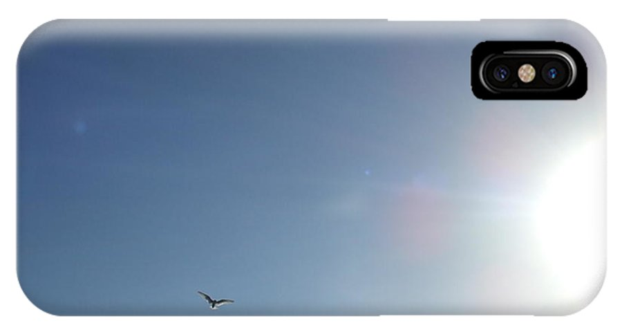 Wildlife IPhone X Case featuring the photograph Freedom by Vicki Berchtold