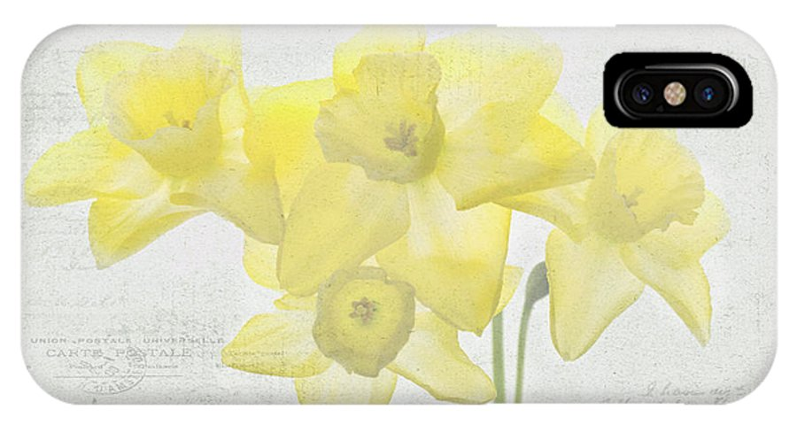 Daffodils IPhone X Case featuring the photograph French Market Series C by Rebecca Cozart