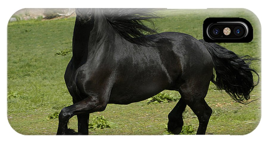 Friesian IPhone X Case featuring the photograph Friesian Horse In Galop by Michael Mogensen