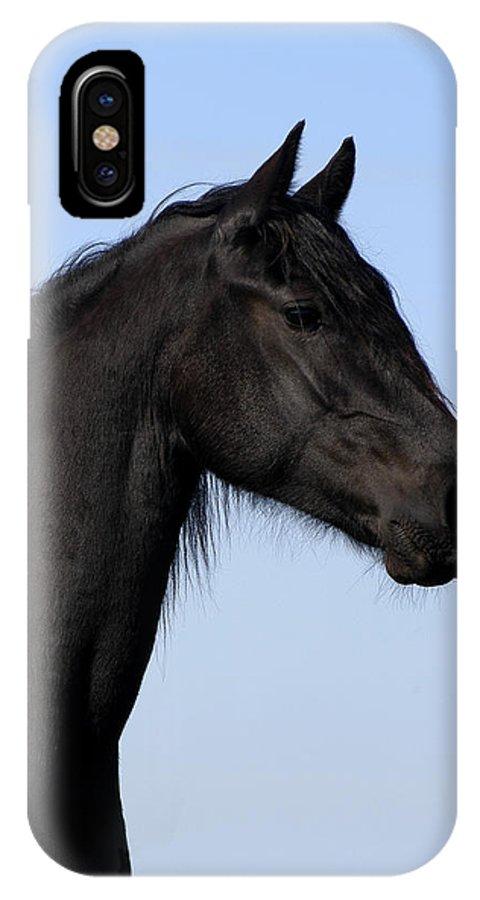 Friesian IPhone X Case featuring the photograph Friesian Stallion by Michael Mogensen