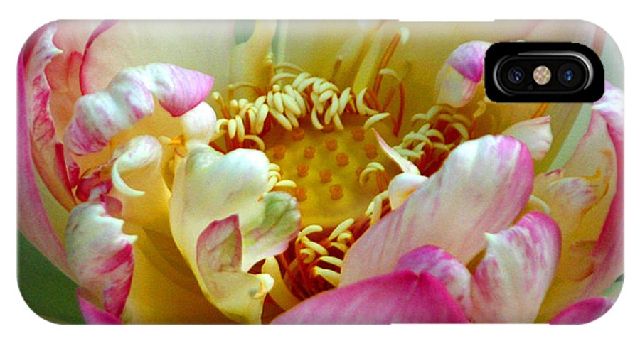 Aquatic IPhone X Case featuring the photograph Frilly Lotus by Annie Johnson