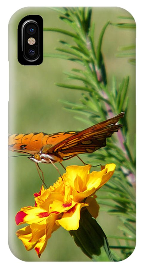 Fritillary IPhone X Case featuring the photograph Fritillary Flitterby by Gale Cochran-Smith
