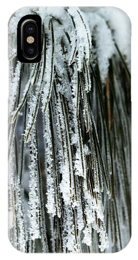 Frost IPhone X Case featuring the photograph Frost Covered Pine Needles IIi by Amanda Kiplinger
