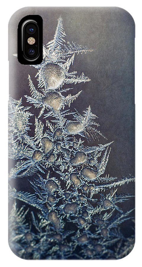 Frozen IPhone X Case featuring the photograph Frost by Scott Norris