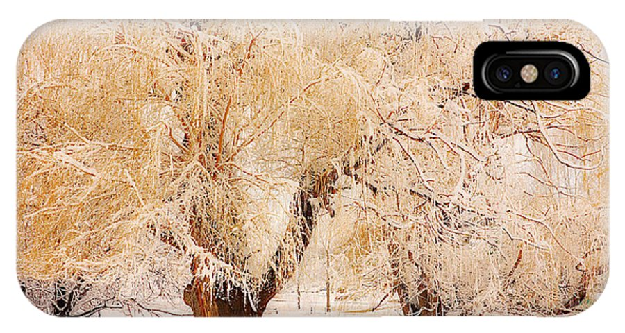 Trees IPhone X Case featuring the photograph Frosted Golden Trees by James BO Insogna