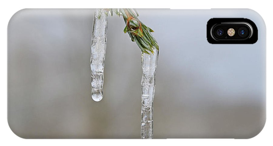 Green IPhone X Case featuring the photograph Frozen by Linda Seacord