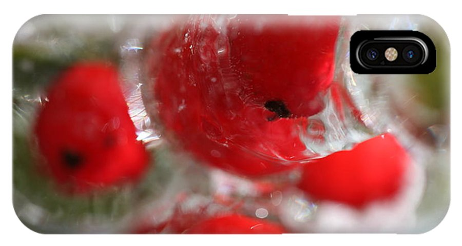 Berries IPhone X Case featuring the photograph Frozen Winter Berries by Nadine Rippelmeyer