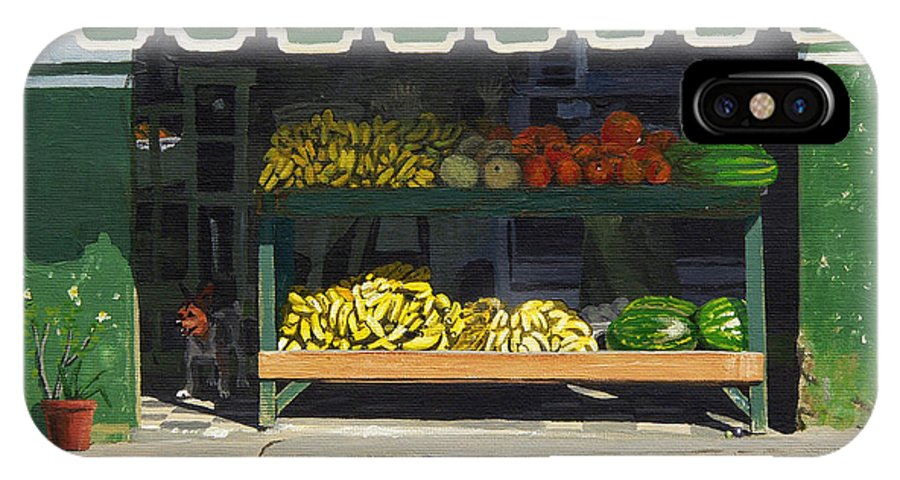 Market In Puerto Vallarta Mexico. Dog Added. IPhone X Case featuring the painting Frutas Y by Michael Ward