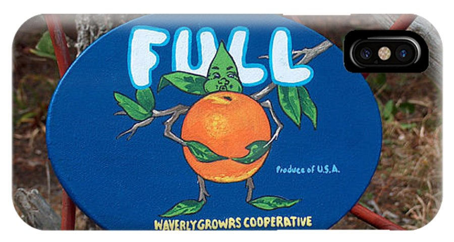 Full Oranges IPhone Case featuring the painting Full by Racquel Morgan