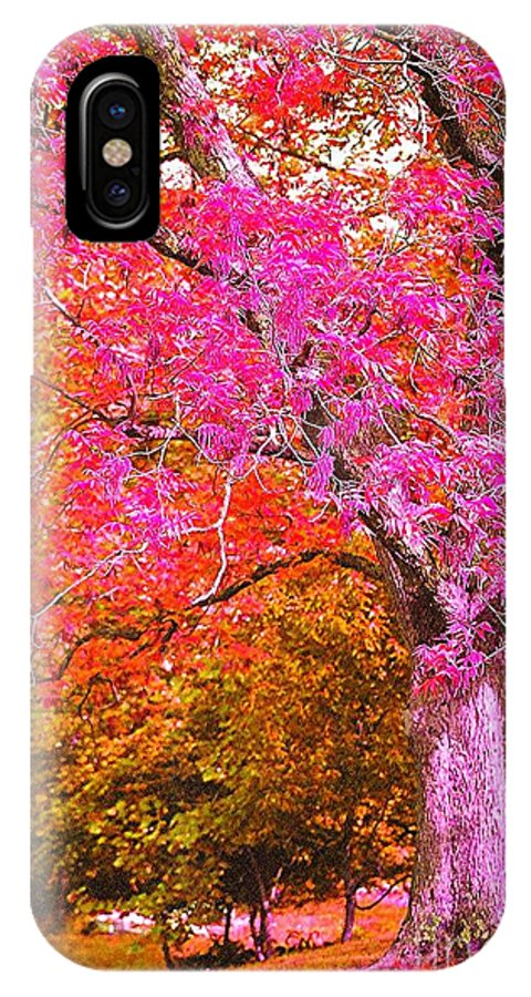 Fuschia IPhone X Case featuring the photograph Fuschia Tree by Nadine Rippelmeyer