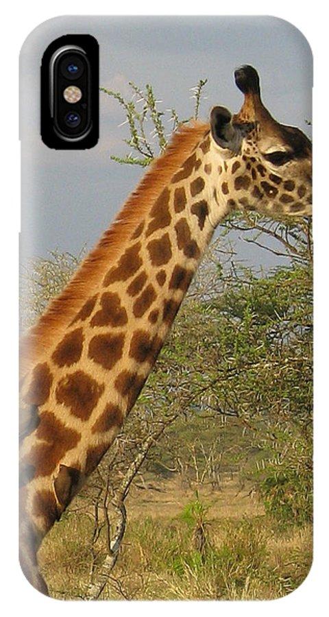 Giraffe Close Up Africa Tanzania Ox Peckers IPhone X Case featuring the photograph Garaffe by Diane Barone