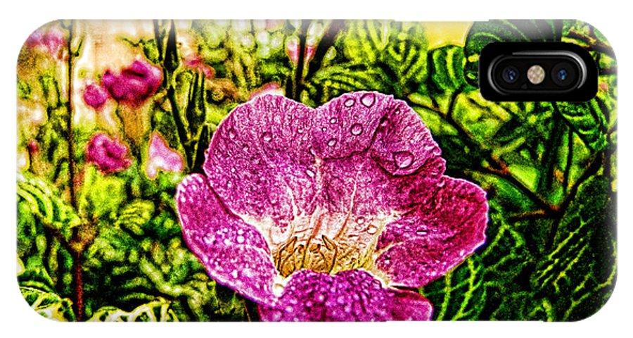 Garden IPhone X Case featuring the photograph Garden Flower by Galeria Trompiz