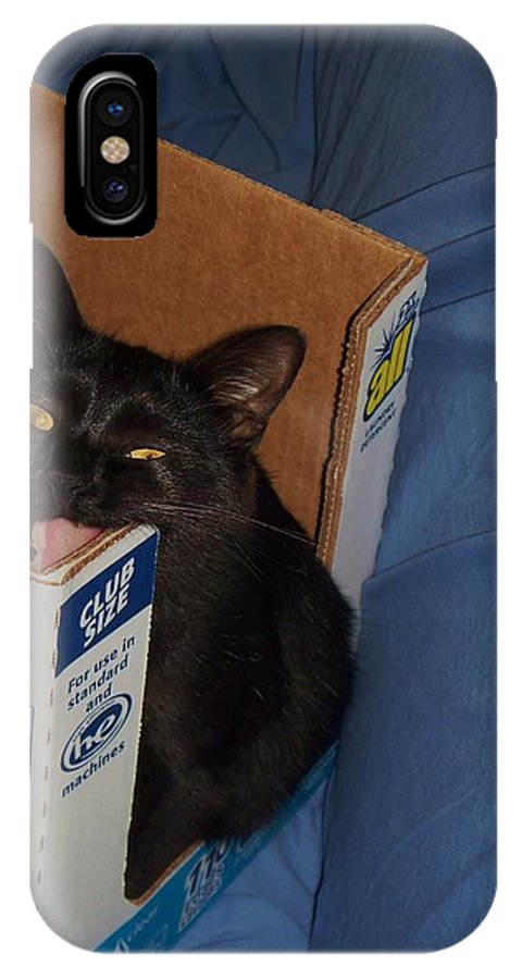 Cat IPhone X Case featuring the photograph Gepptto The Cat by Eric Schiabor
