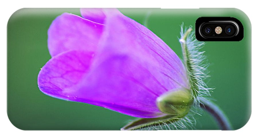 Geranium IPhone X Case featuring the photograph Geranium Budding Out by Larry Ricker