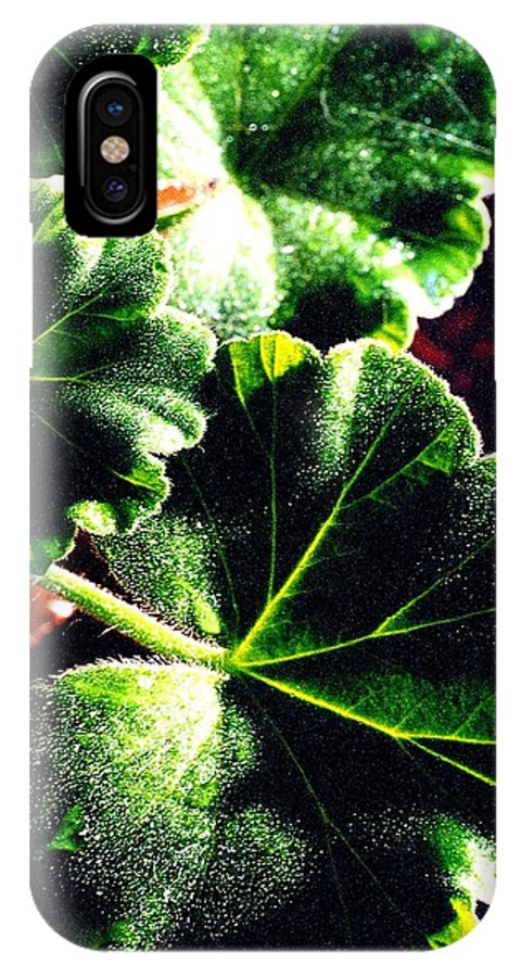 Geraniums IPhone X Case featuring the photograph Geranium Leaves by Nancy Mueller