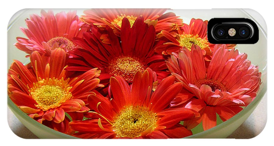 Nature IPhone X Case featuring the photograph Gerbera Daisies - A Bowl Full by Lucyna A M Green
