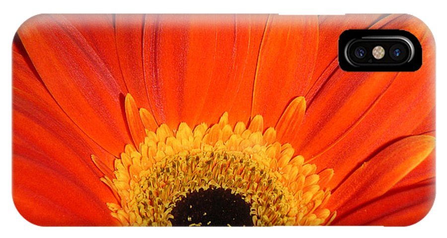 Nature IPhone X Case featuring the photograph Gerbera Daisy - Glowing In The Dark by Lucyna A M Green
