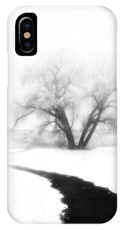 Tree IPhone X Case featuring the photograph Getting There by Marilyn Hunt