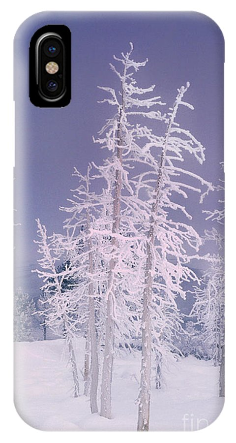 North America IPhone X Case featuring the photograph Ghost Trees Yellowstone National Park by Dave Welling