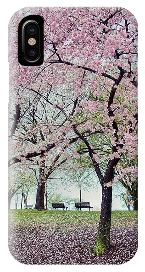 Cherry Blossoms IPhone X Case featuring the photograph Gifts by Mitch Cat