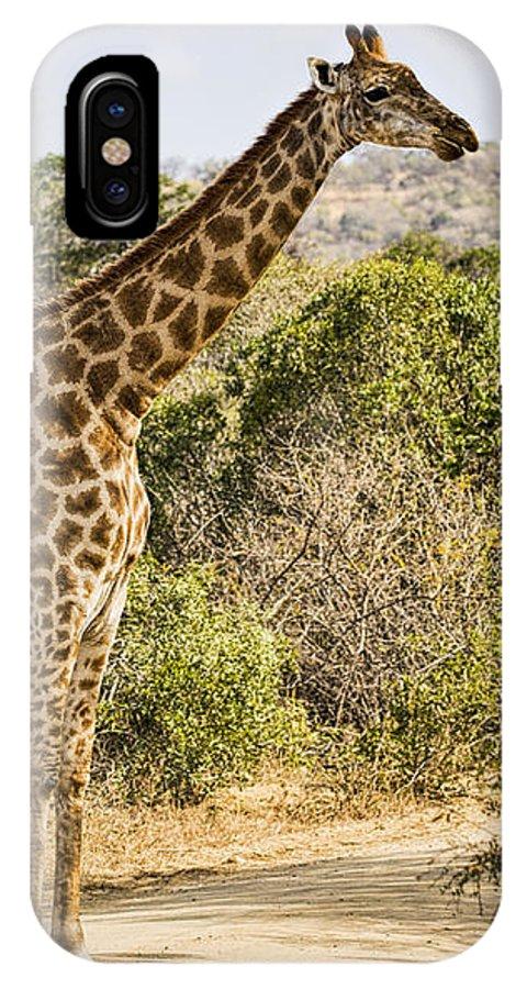 Giraffe IPhone X Case featuring the photograph Giraffe Grazing by Stephen Stookey