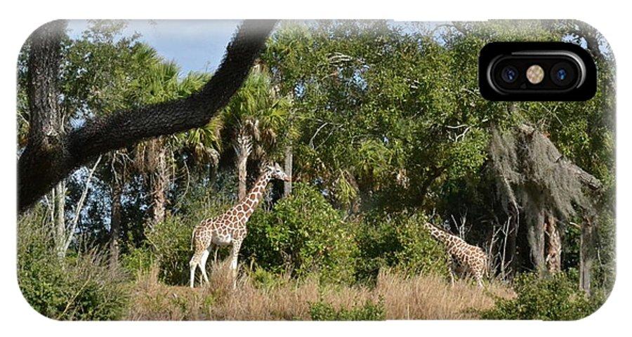 Giraffes IPhone X Case featuring the photograph Giraffes by Carol Bradley
