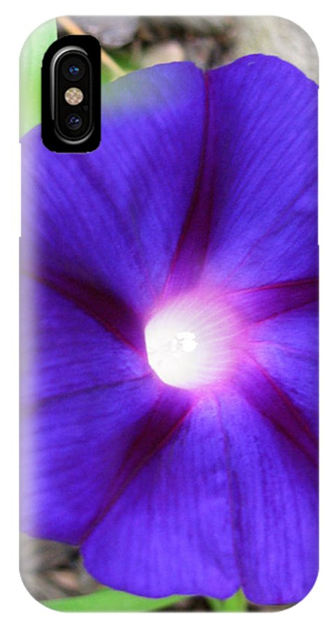 Glorious Morning IPhone X Case featuring the photograph Glorious Morning by Debra   Vatalaro