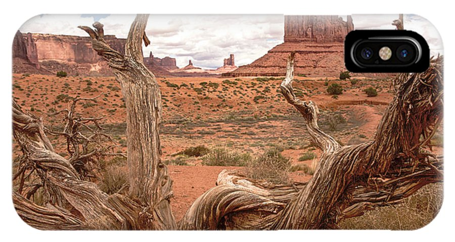 Arizona IPhone X / XS Case featuring the photograph Gnarled Tree At Monument Valley by Craig Voth