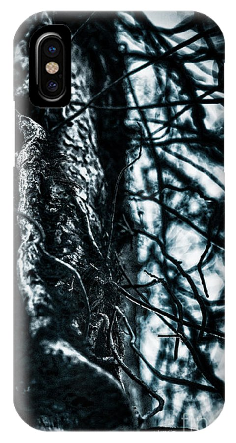 Bark IPhone X Case featuring the photograph Gnarled Vines Surround A Tree by Scott Chimber