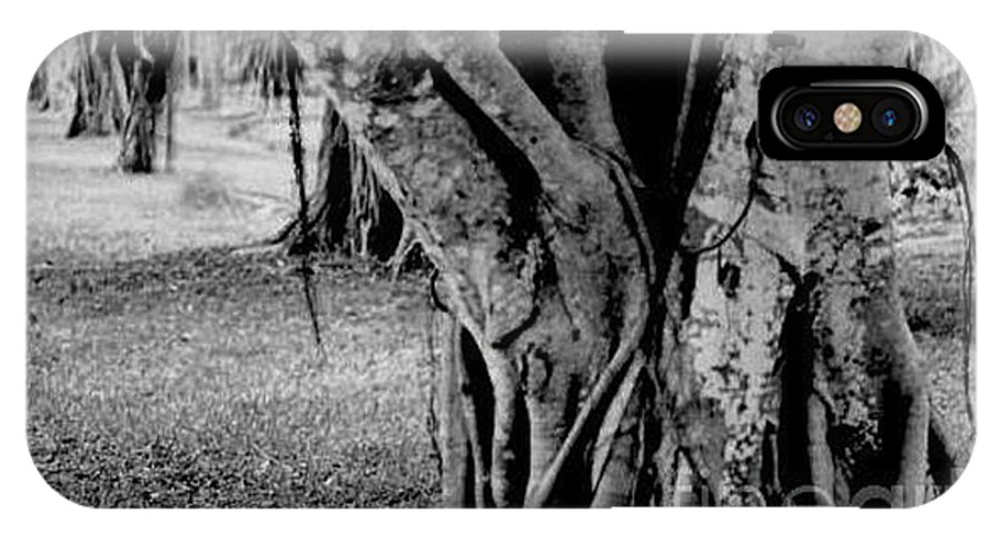 Tree IPhone X Case featuring the photograph Gnarly Nature by Vicki Lynn Sodora