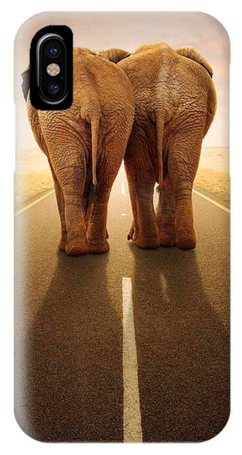 Elephant IPhone X Case featuring the photograph Going Away Together / Travelling By Road by Johan Swanepoel