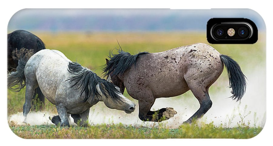 Mustangs IPhone X Case featuring the photograph Going For The Knees by Greig Huggins
