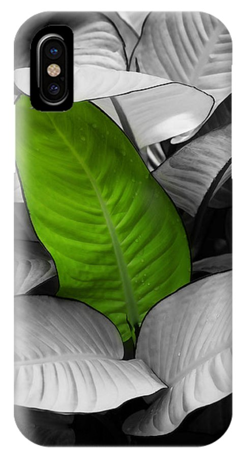 Leaf IPhone X Case featuring the photograph Going Green - Dreamy by Marilyn Hunt