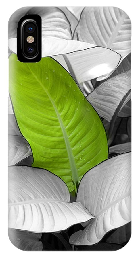 Leaf IPhone X Case featuring the photograph Going Green Lighter by Marilyn Hunt