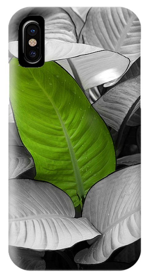 Green IPhone X Case featuring the photograph Going Green by Marilyn Hunt