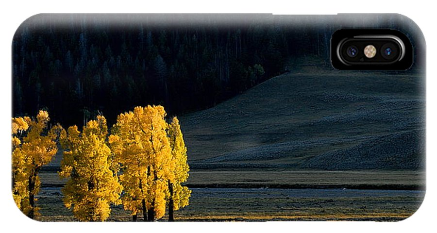 Lamar Valley IPhone X Case featuring the photograph Gold In The Lamar Valley by Larry Ricker