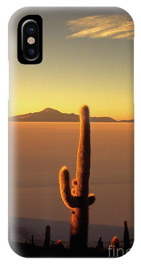 Salar De Uyuni IPhone Case featuring the photograph Golden Cactus Sunset by James Brunker