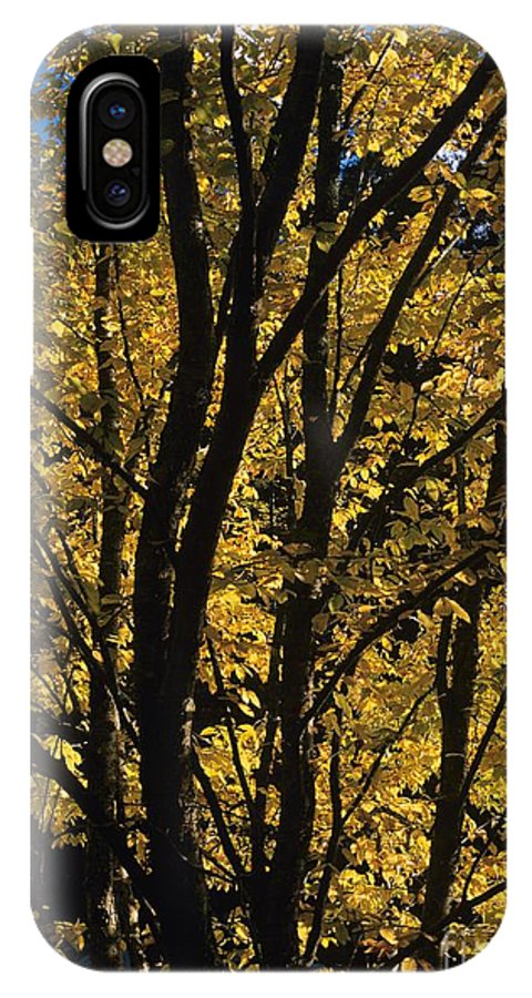 Autumn IPhone X Case featuring the photograph Golden Colors Of Autumn In New England by Erin Paul Donovan