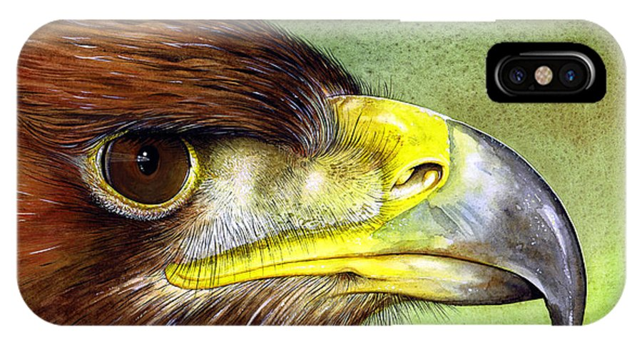 Wildlife IPhone X Case featuring the painting Golden Eagle by Paul Dene Marlor