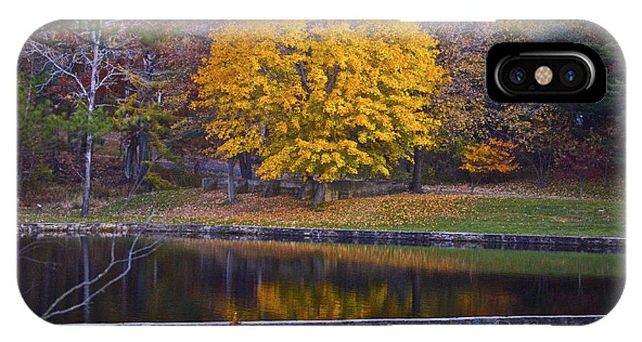 Tree IPhone X Case featuring the photograph Golden Orb by Faith Harron Boudreau
