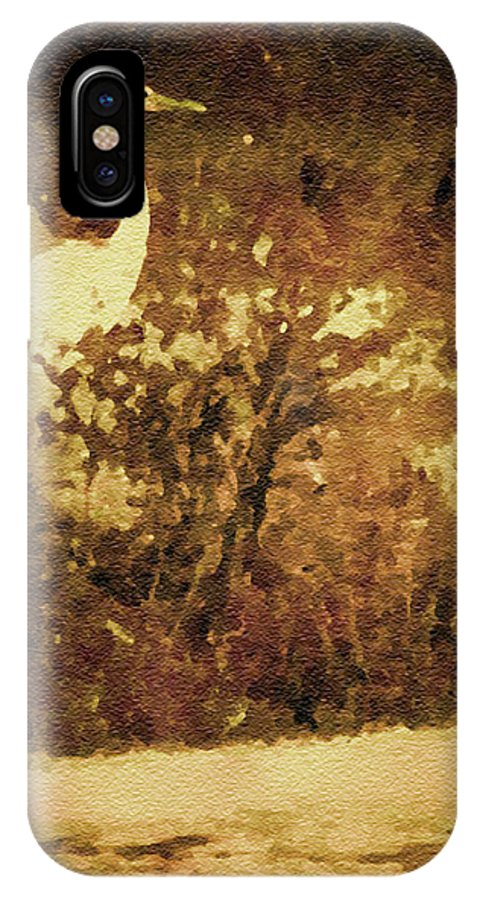 Egret IPhone X Case featuring the photograph Golden Pond by Claudia O'Brien
