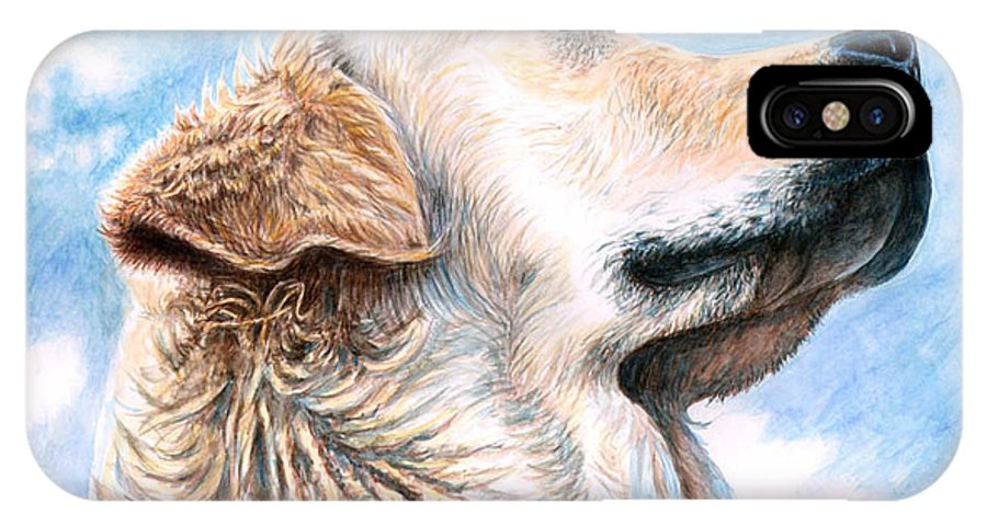 Dog IPhone Case featuring the painting Golden Retriever by Nicole Zeug