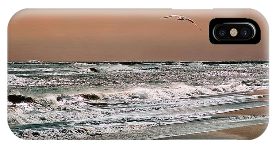 Seascape IPhone X Case featuring the photograph Golden Shore by Steve Karol