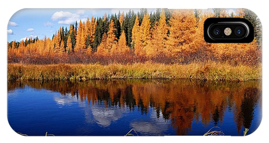 Spruce River IPhone X Case featuring the photograph Golden Tamaracks Along The Spruce River by Larry Ricker